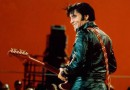 Elvis – The 50 Greatest Hits