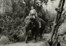 Tarzan és az ördögi nő