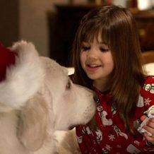 Karácsonyi kutyabalhé