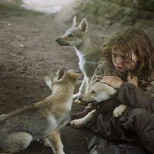 Túlélni farkasok közt